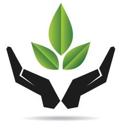 لجنة البيئة